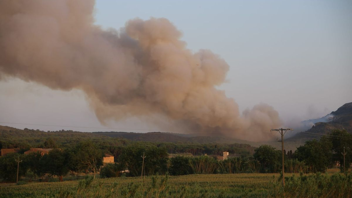 La columna de fum del foc del Montgrí