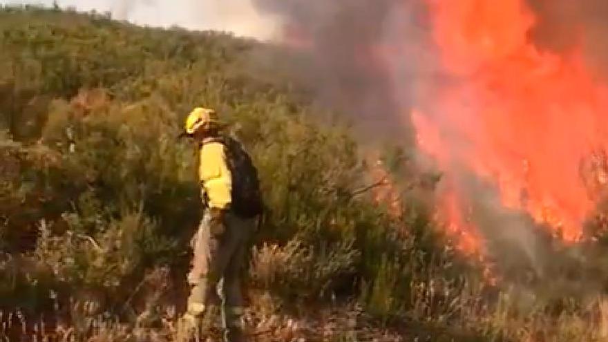Activo el incendio de A Mezquita con 240 hectáreas quemadas