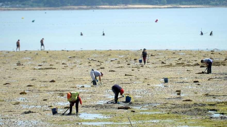 El efecto de los furtivos de bañador sufre un descenso durante este verano en A Illa