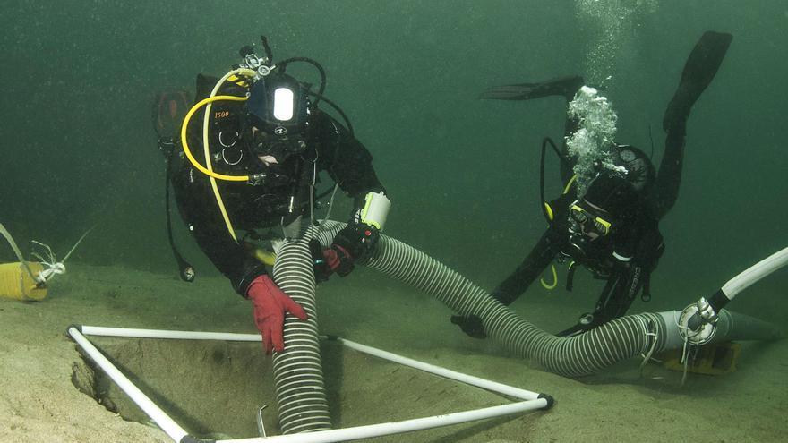 La nueva  joya de la Galicia submarina