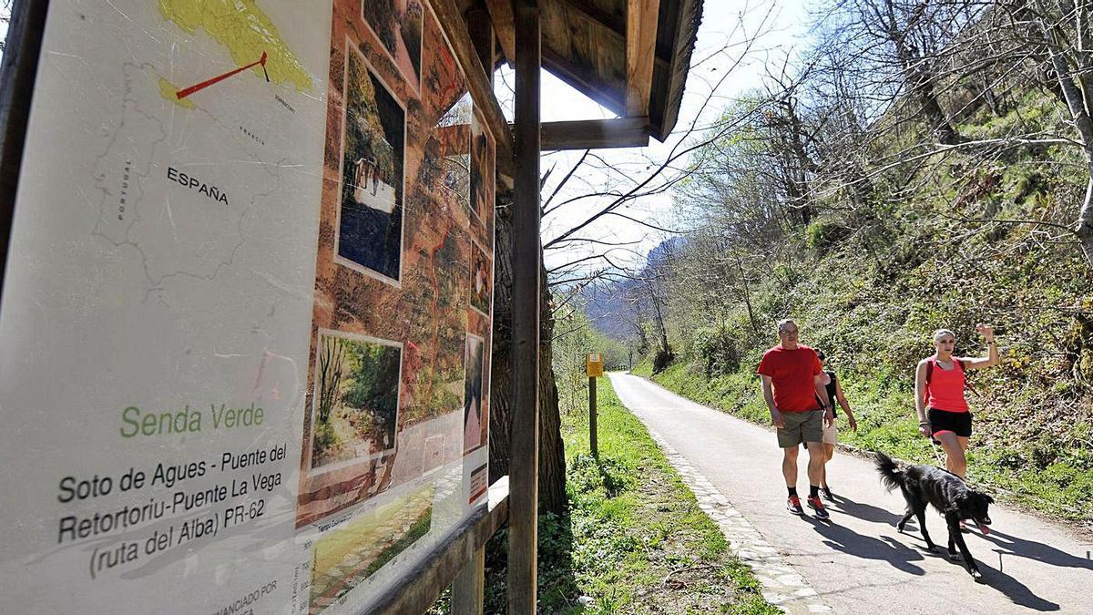 Caminantes en la Ruta del Alba, en el parque natural de Redes.