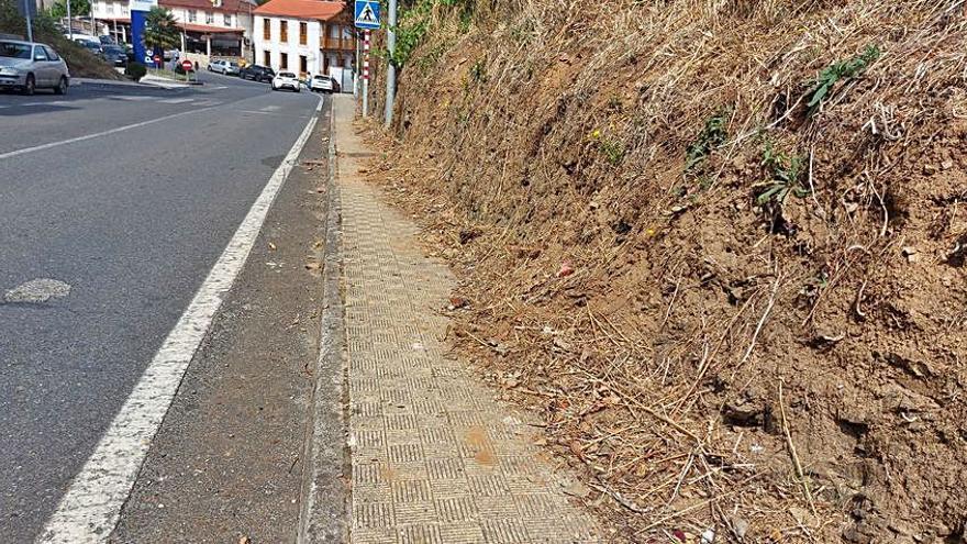 Otero exige la limpieza de aceras en Camanzo y mejora del mobiliario en Gres