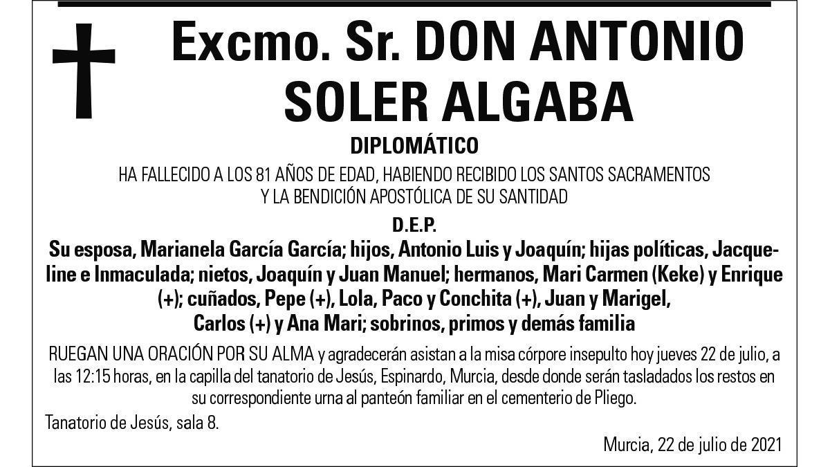 Excmo. Sr. D. Antonio Soler Algaba