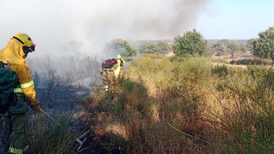 Incendio forestal en Calzadilla y Guijo de Coria