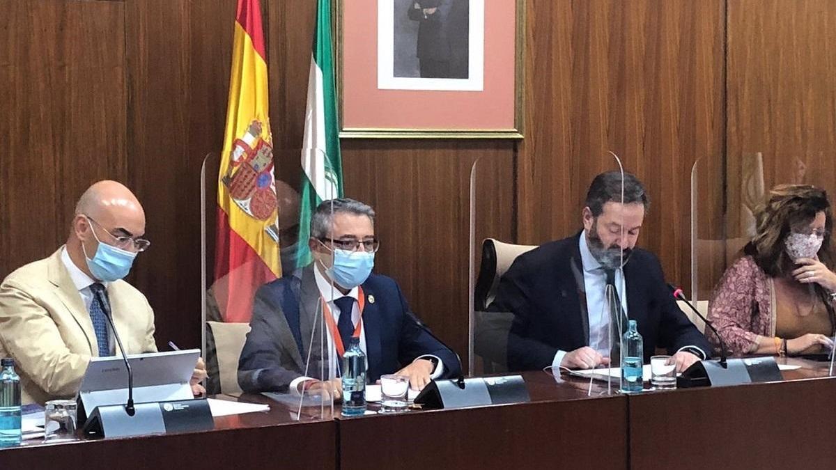 El presidente de la Diputación de Málaga, Francisco Salado, durante su participación en la mesa de trabajo sobre la estrategia andaluza frente al reto demográfico del Parlamento de Andalucía.