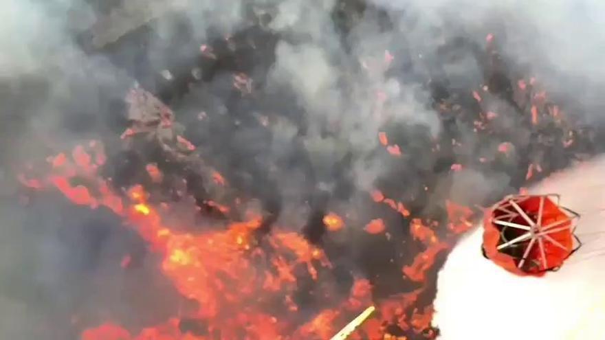 Llamamiento a la ciudadanía para evitar repetir el devastador incendio de Gran Canaria