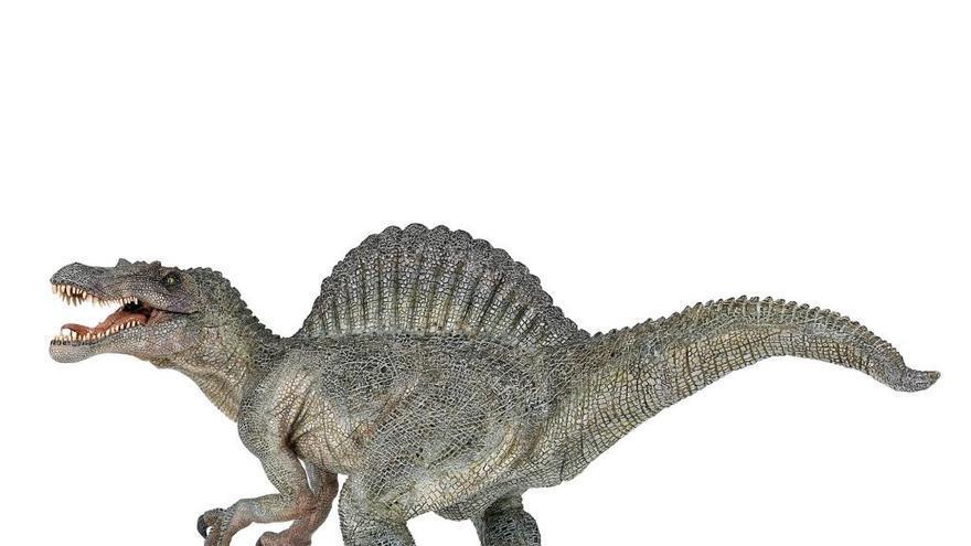 Fòssils que llancen llum sobre l'extinció dels dinosaures