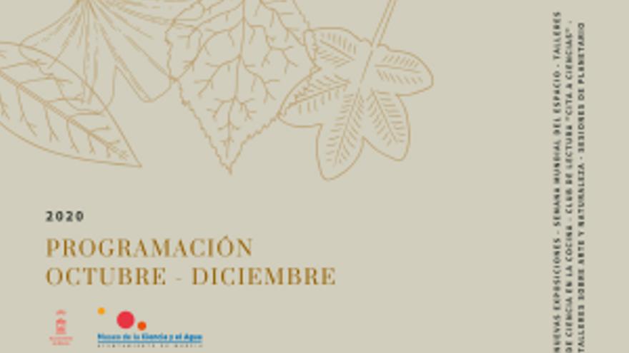 Taller sobre arte y naturaleza: Cianotipia con plantas comestibles de la Huerta de Murcia