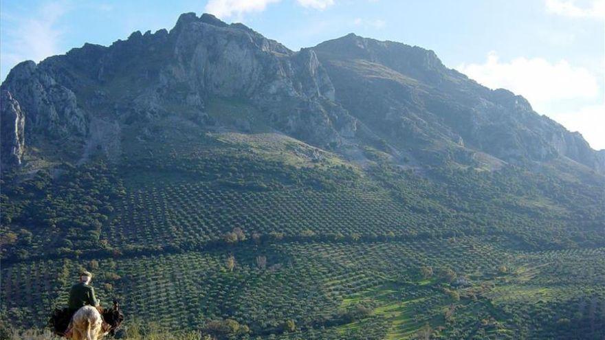 Asaja se alegra de que Sierra Morena no se declare parque natural