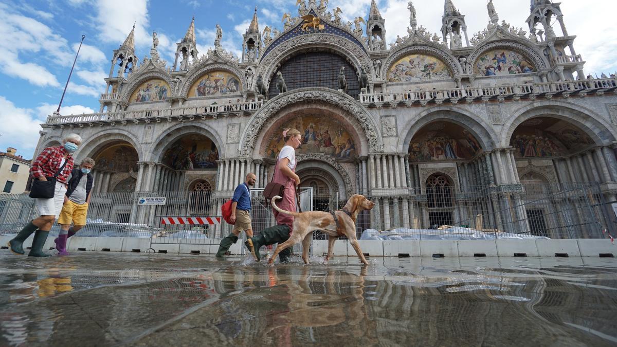 Venice is flooded again.