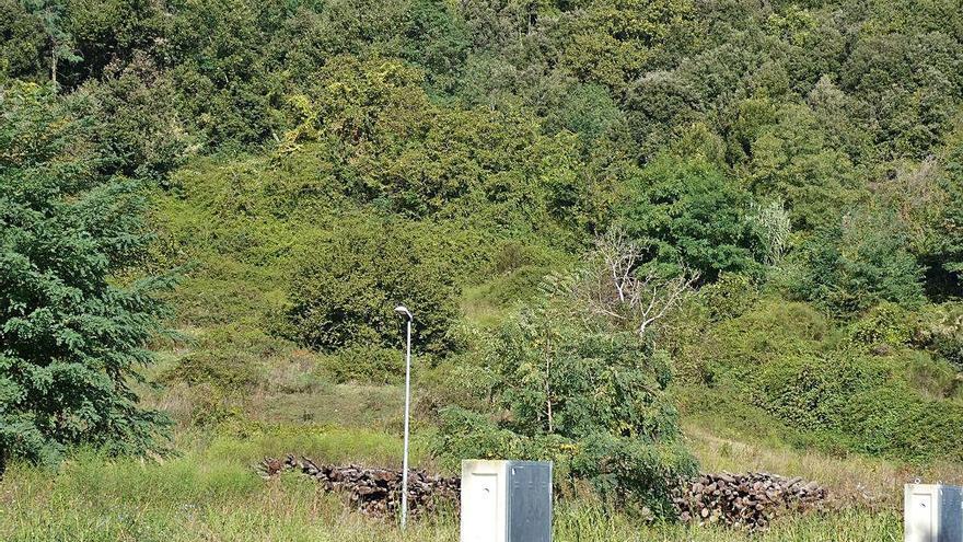 Cerquen testimonis d'un poblat prehistòric a Santa Pau