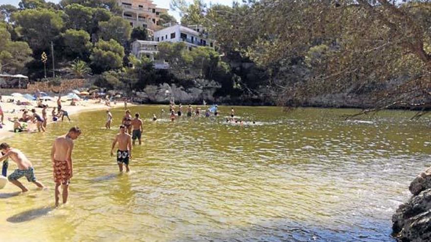 Meer um Mallorca ist drei Grad wärmer als sonst üblich