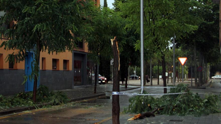 Efectes de les pluges torrencials a la Catalunya Central