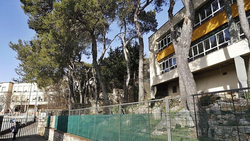 Una empresa del hòlding d'ACS talarà 59 pins a Montjuïc a meitat de preu