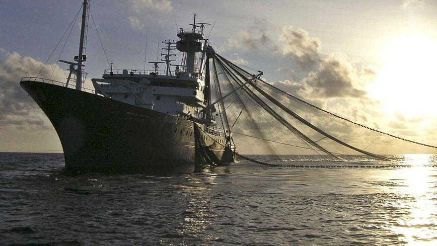 Flota y ecologistas se alían por el atún