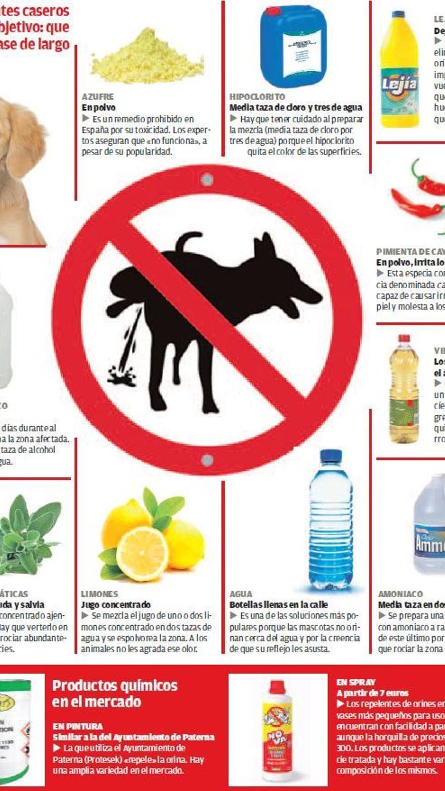 Maneras Y Remedios Para Evitar Que Los Perros Meen En Las Puertas