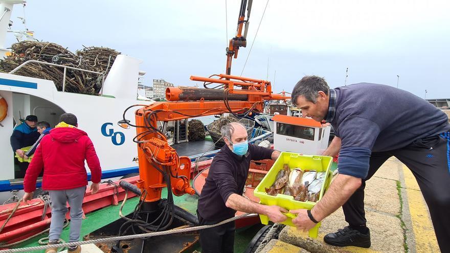 El puerto pesquero de O Corgo se queda pequeño