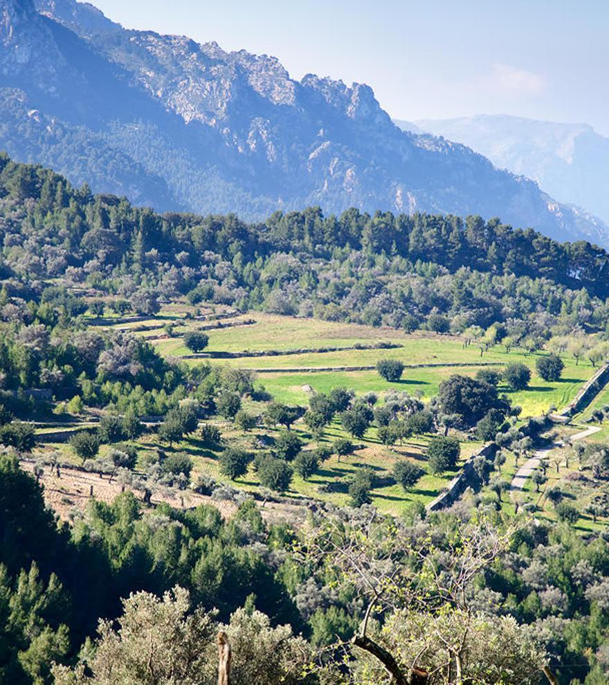 Cuatro rutas por la Serra de Tramuntana con vistas al mar