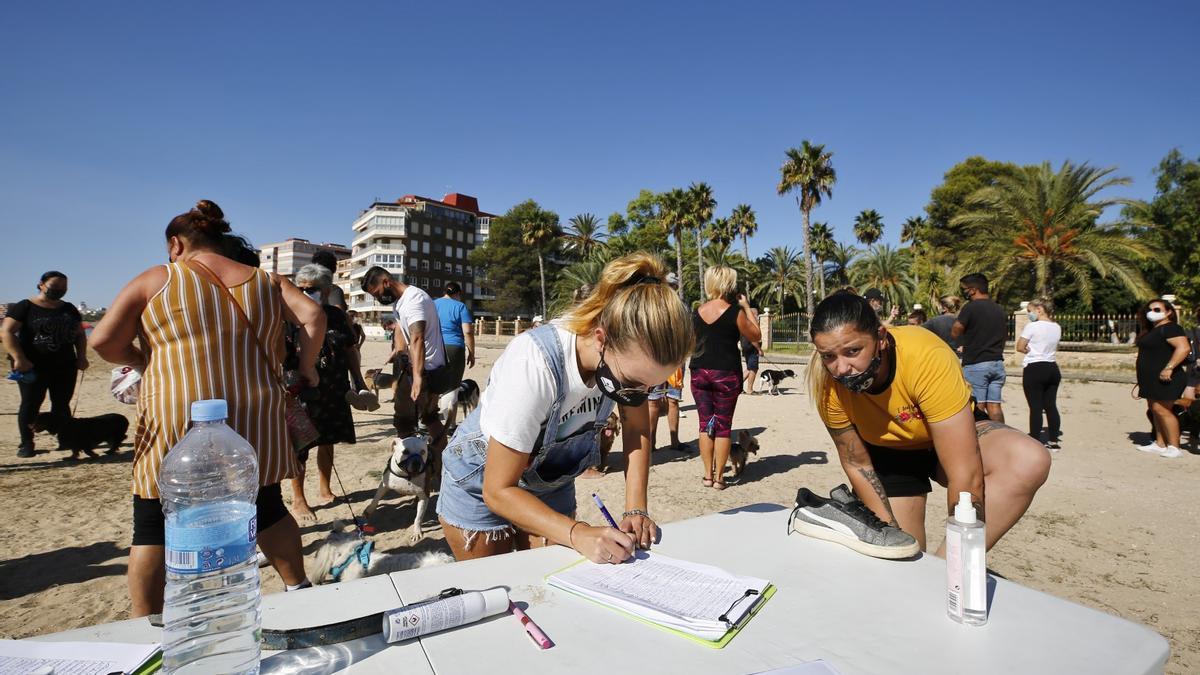 """Protesta para reclamar """"playas caninas dignas"""" en Torrevieja"""