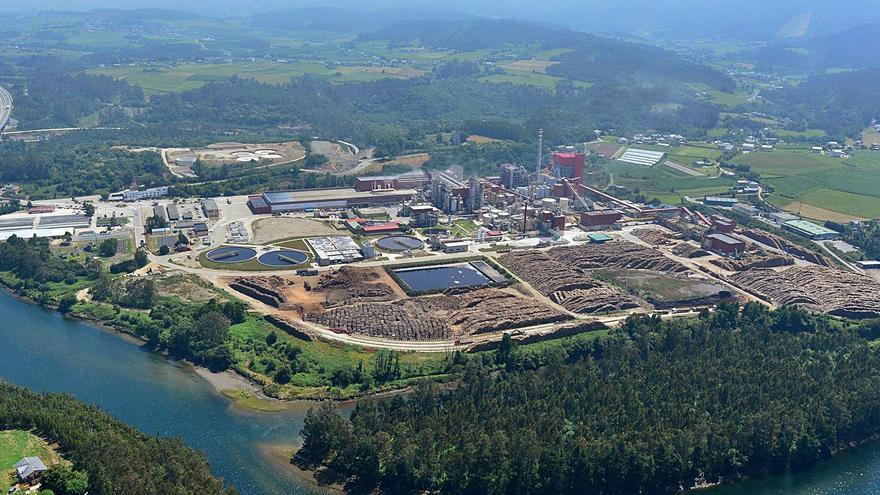Ence ve más cerca la inversión de 490 millones para potenciar su planta de Navia