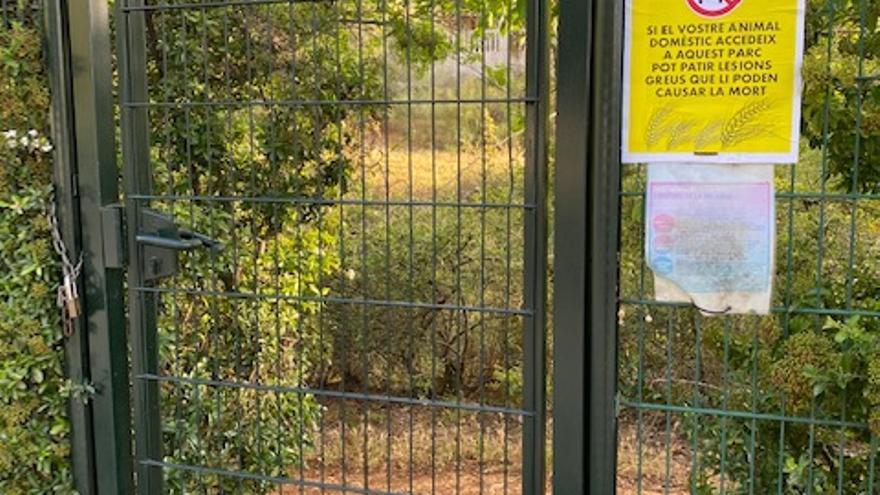 Reclaman a Cort que limpie de espigas los parques para evitar lesiones a los perros