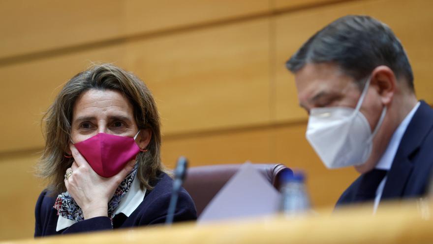 """Ribera urge dejar """"debates estériles y no distorsionar la realidad"""" del lobo"""