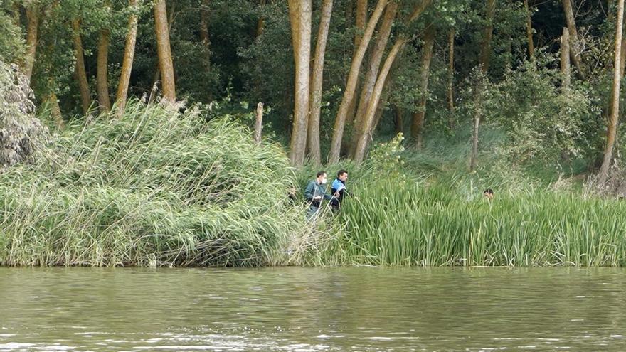 Expertos en reptiles se suman a la búsqueda del cocodrilo en el Duero