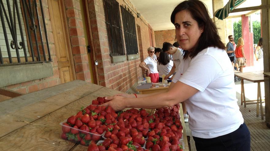 Una empresa de Gijón busca cinco hectáreas en Candamo para el cultivo intensivo de fresa