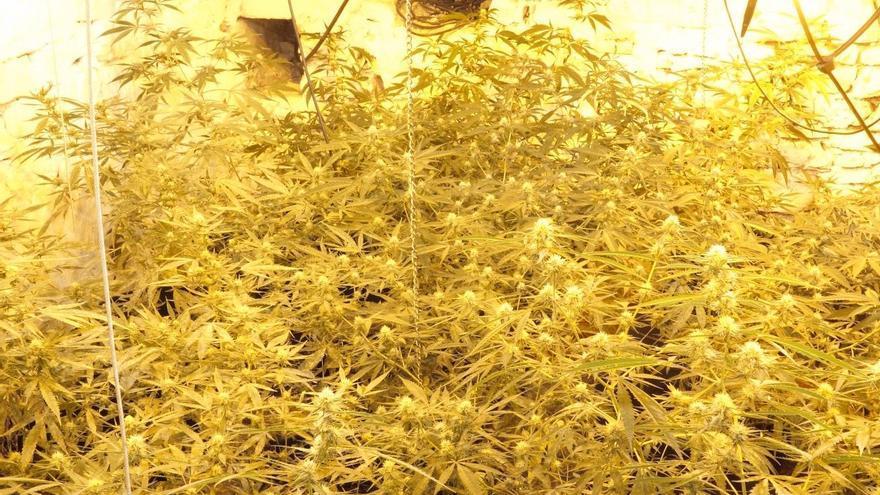 La lucha contra la droga deja 23 puntos desmantelados y 34 detenidos en un año