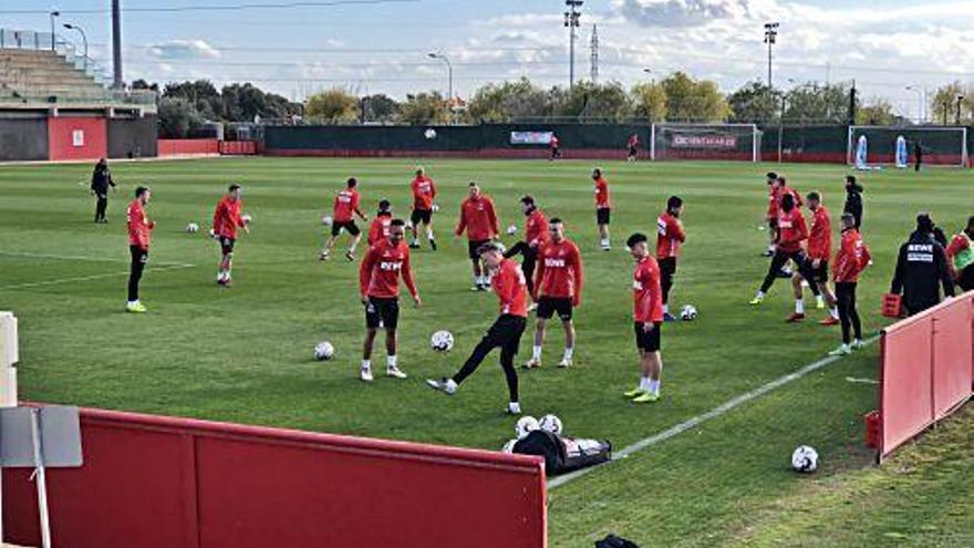 Das Testspiel des 1. FC Köln gegen Real Mallorca ist öffentlich