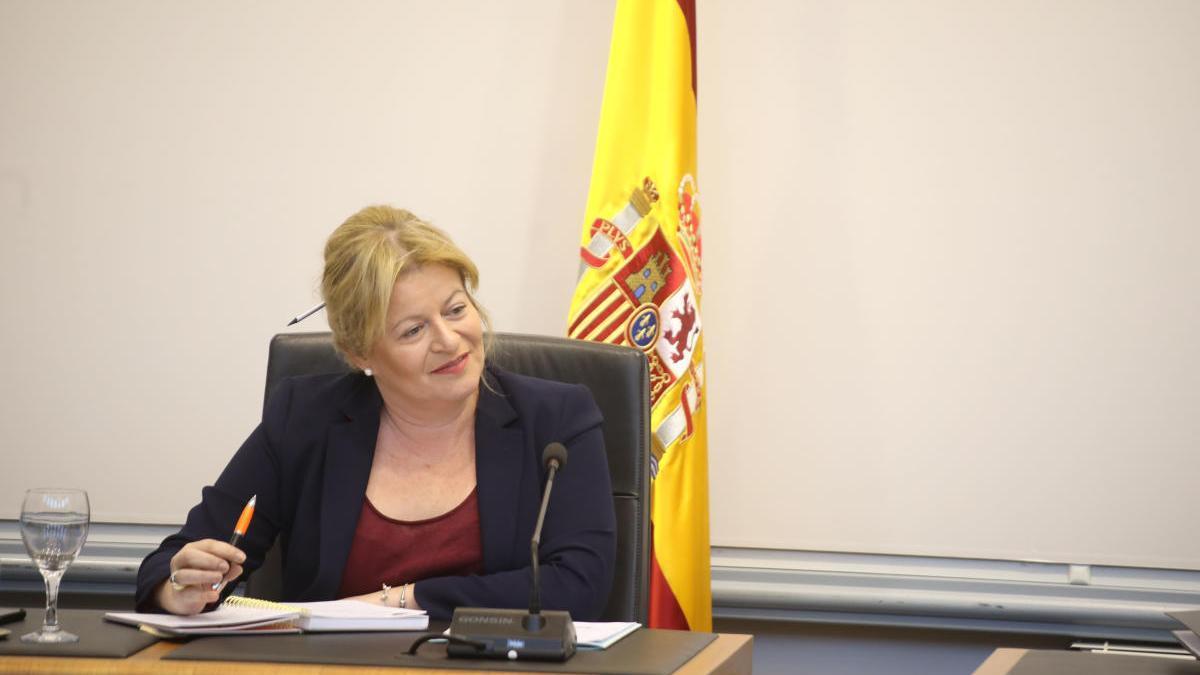 La diputada de Ciclo Hídrico, Ana Serna.