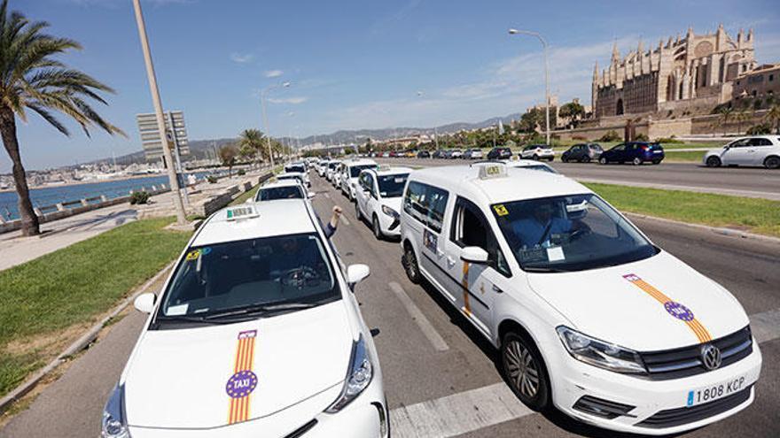 Pacto, PP y El Pi prohíben con su voto la entrada de Uber y Cabify en Baleares