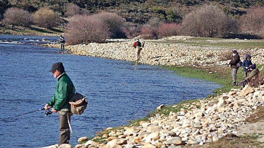 La tasa de las licencias de caza y pesca bajará un 95% en Castilla y León