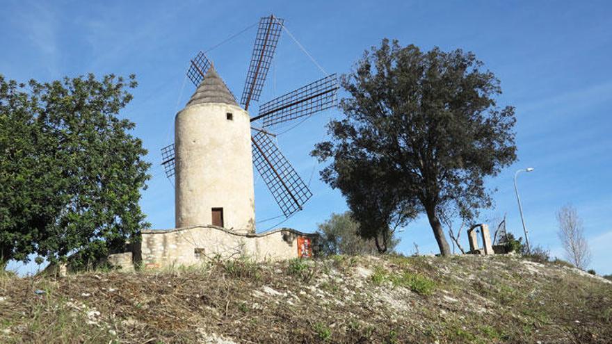 Ein Herz für eine Mallorca-Mühle