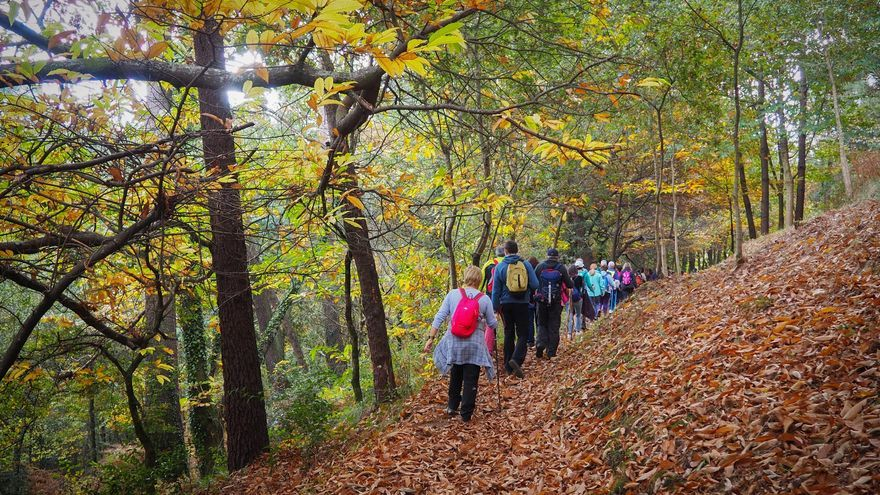 Abre la inscripción gratis para otra ruta de senderismo guiada y con concierto en Vigo