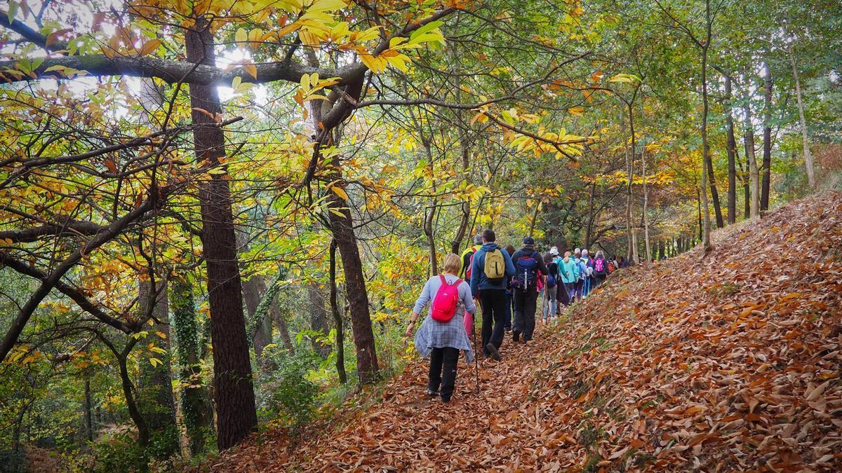 Foto de archivo de participantes en una ruta de senderismo guiada y gratis celebrada en 2018 por Cabral.