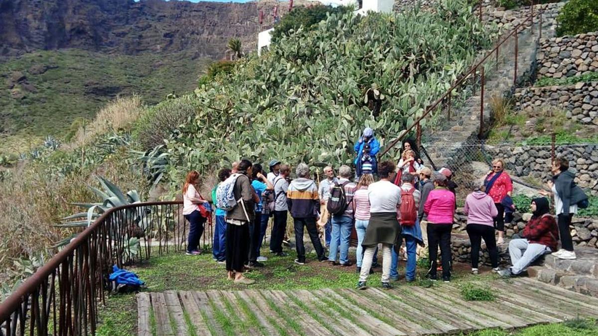Visita a la depuradora natural del caserío de Masca, en Buenavista del Norte.