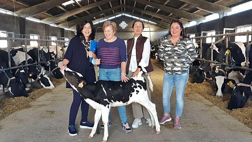 Referente de servicios en el medio rural y agroalimentario asturiano