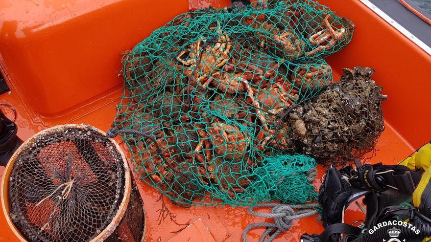 Lucha contra el furtivismo: decomisan 240 kilos de marisco en la ría de Pontevedra