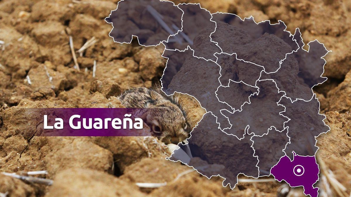 La Guareña.