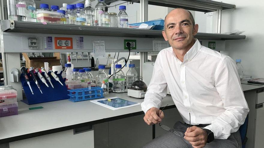 Leadartis levanta 5 millones para desarrollar una inmunoterapia contra el cáncer