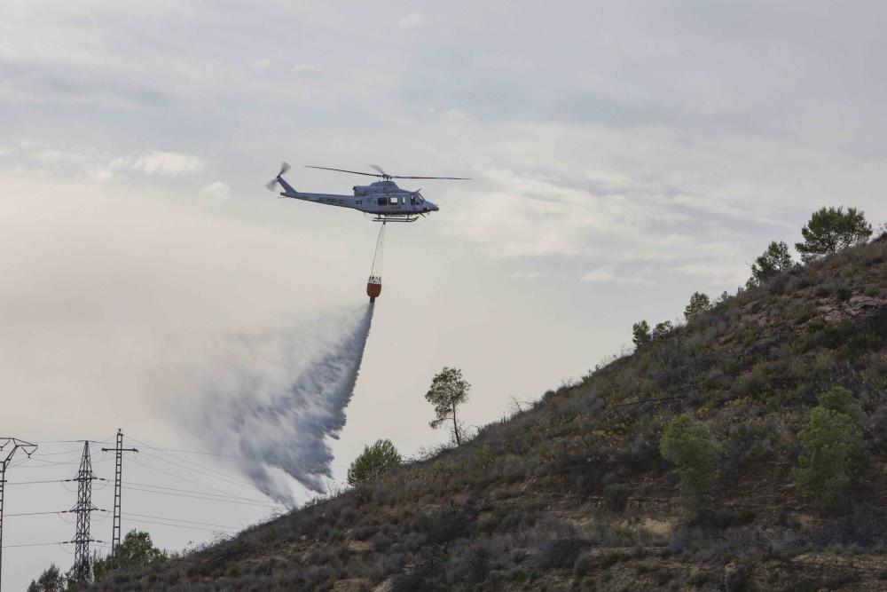 Incendio forestal en la zona el Pi d'Ambrosio de l'Ènova