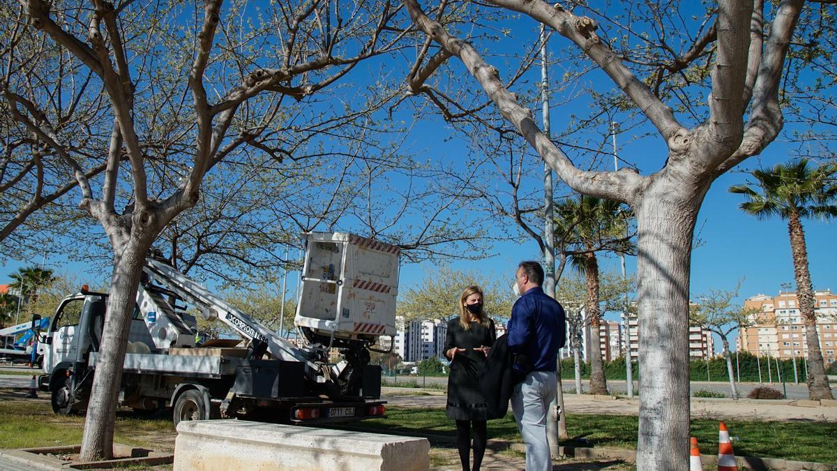La alcaldesa de Castelló, Amparo Marco, visita la instalación de LEDS.