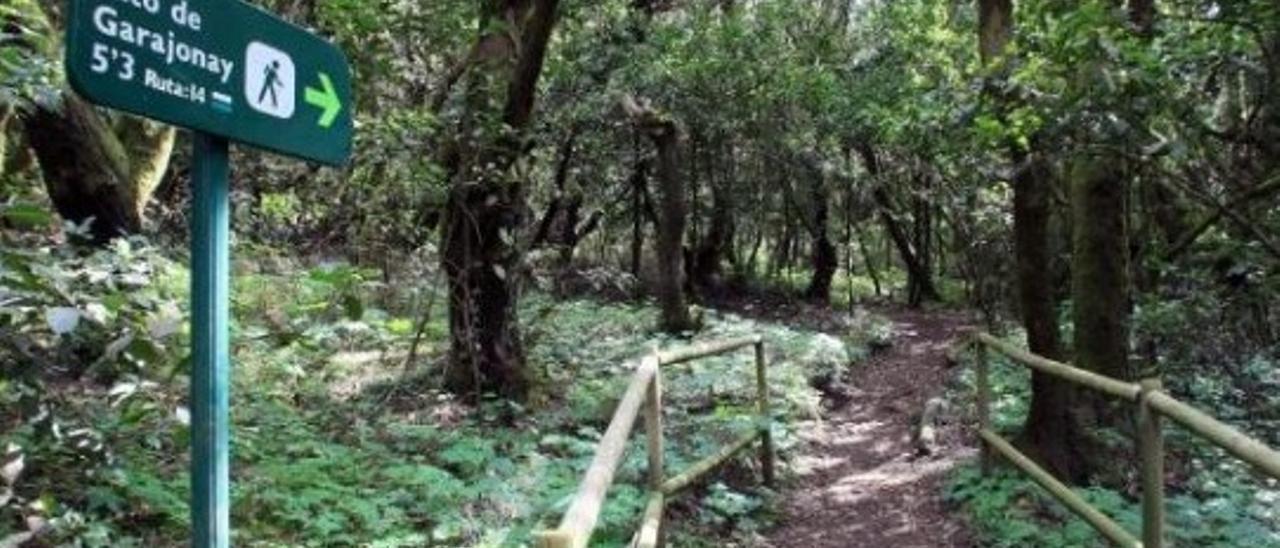 A silbar, a La Gomera