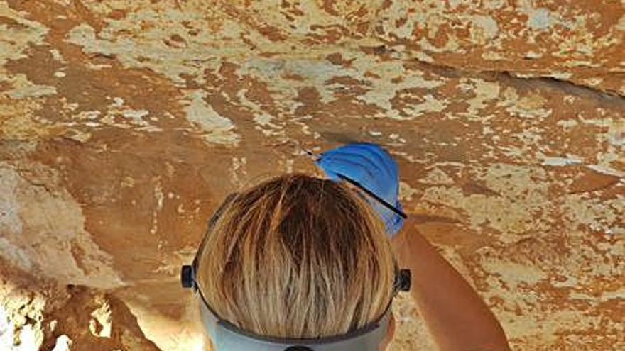 Conservació treballa per a estabilitzar les pintures rupestres de la cova del Mançano de Xaló