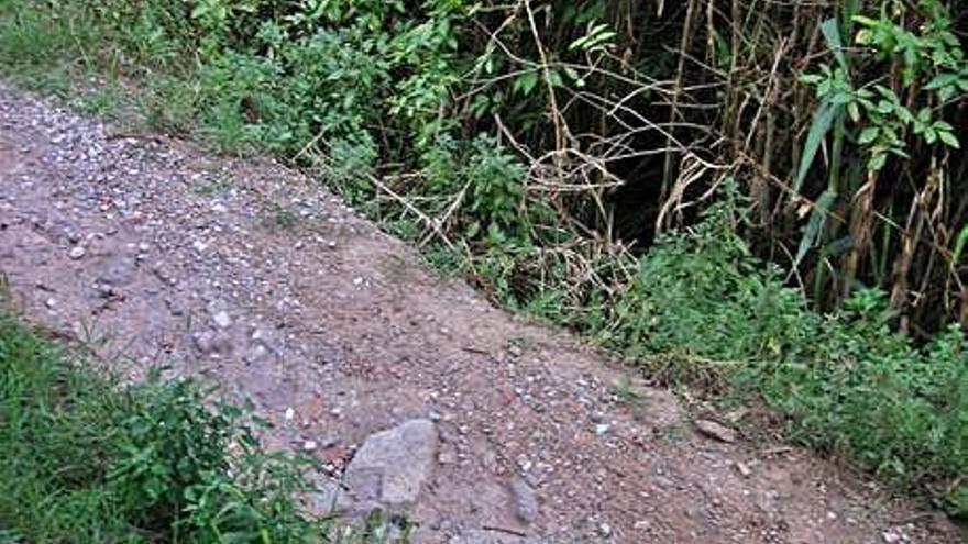 L'Ajuntament intervé en sis camins rurals malmesos  per les darreres pluges