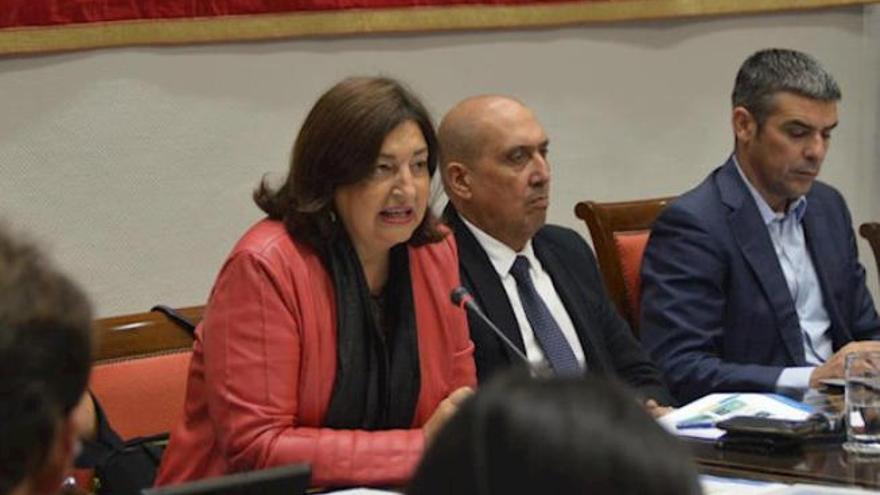 ANPE Canarias pide a Guerra que defienda un pacto educativo en Madrid