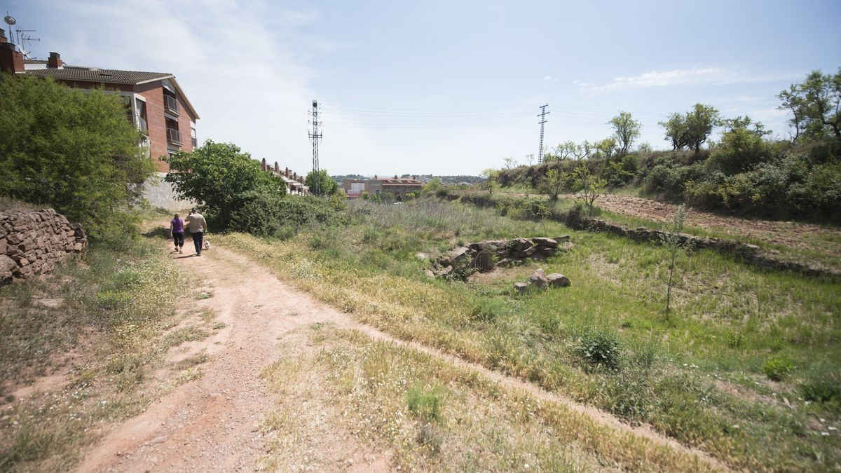 Terrenys on es preveu construir el nou institut