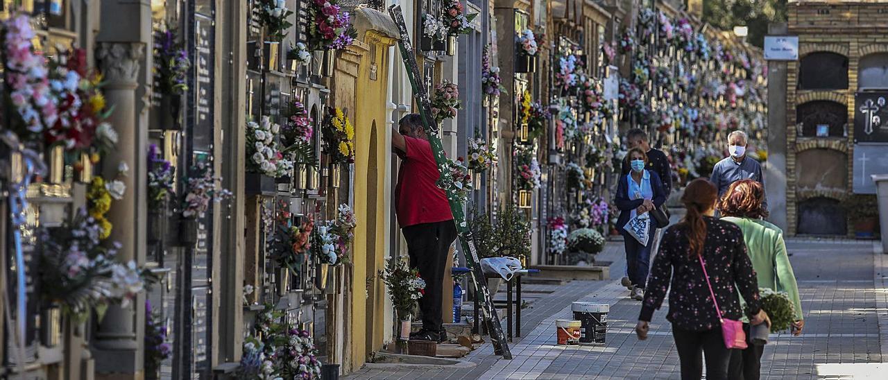 Cementerio viejo de Elche en octubre de 2020, pocos días antes de la conmemoración de Todos los Santos. | ANTONIO AMORÓS