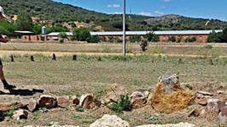 Seis cabezas de serpiente de lana virgen protegen el Dolmen del Tesoro en Morales